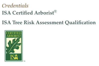 ISA Certified Arborist Credentials for Scotty Tree Service